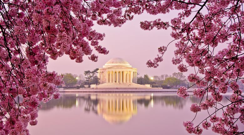Tour organizzato Stati Uniti – Da Washington a New York
