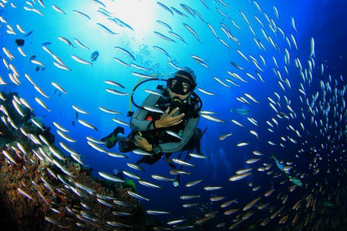 Scubando: Mare Malta: Long weekend nel mare maltese