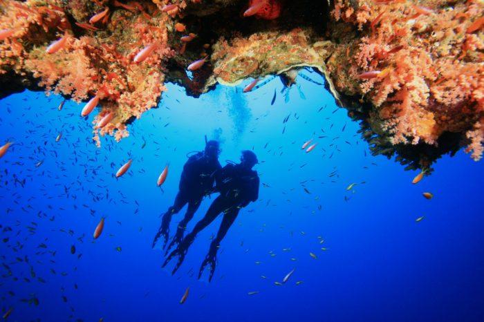 Scubando: Viaggio Sub all'Isola d'Elba: Immersioni nell'Arcipelago Toscano