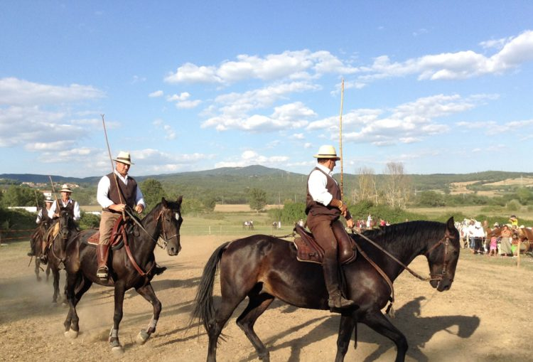 trekking a cavallo in toscana