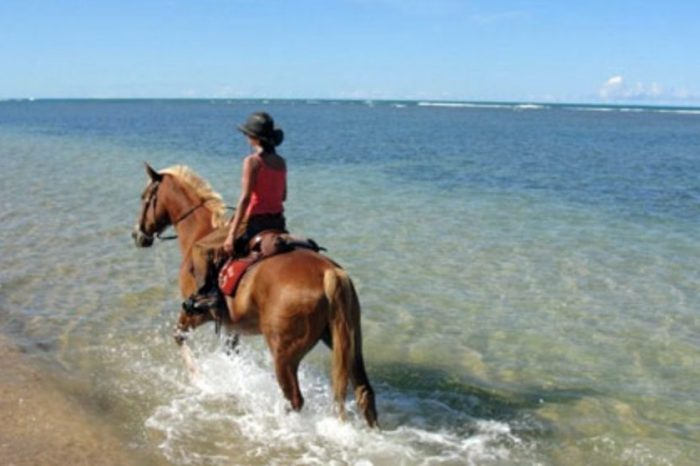 Cavalcando: BAHIA: LE SPIAGGIE DI SALVADOR DE BAHIA