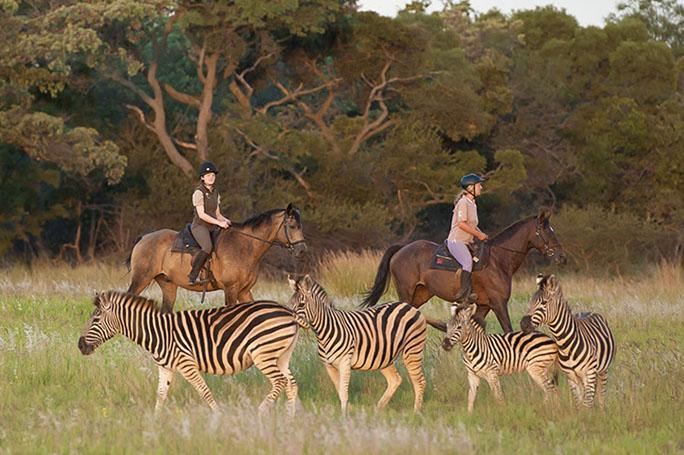 Sudafrica cosa vedere – GUIDA VIAGGI