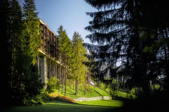 Viaggiare in Trentino – S. Andrea (BZ) – My Arbor Hotel****sup hotel sugli alberi.